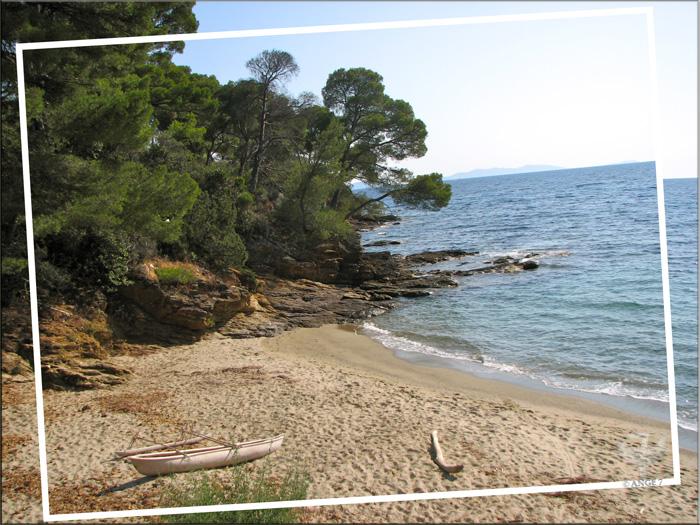 La plage du jardin des Méditerranées